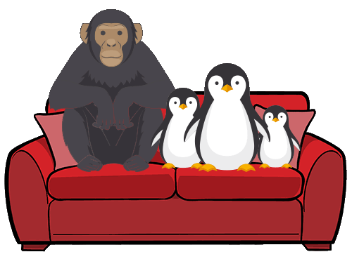 Animals sitting on sofa
