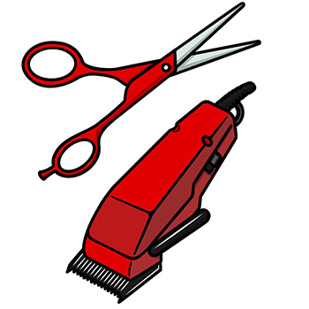 Scissors and hair clippers